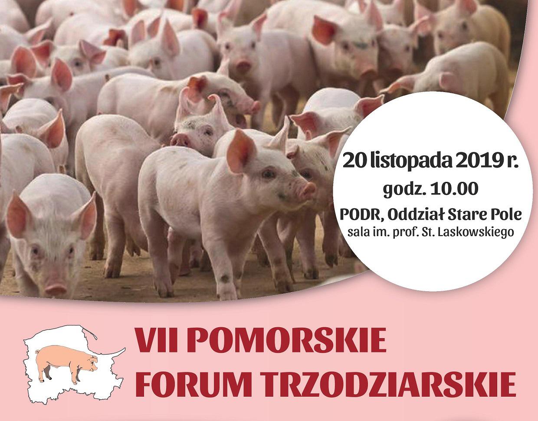 VII Pomorskie Forum Trzodziarskie
