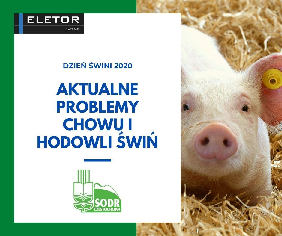 Dzień Świni 2020 z Eletorem